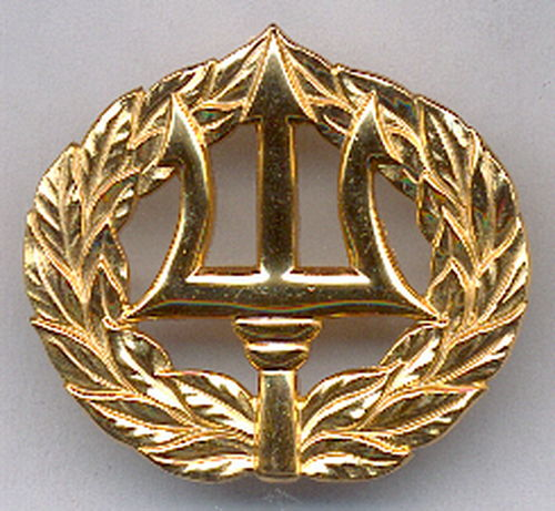 INSIGNIA USN COMMAND ASHORE (PROJECT MANAGER)
