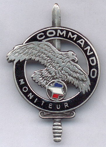 INSIGNIA FRANCESA COMMANDO MONITEUR